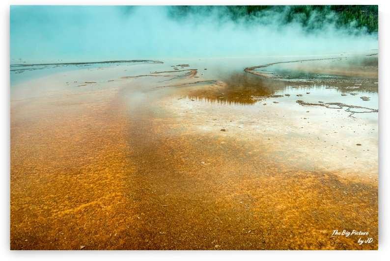 Yellowstone Golden by The Big Picture by JD