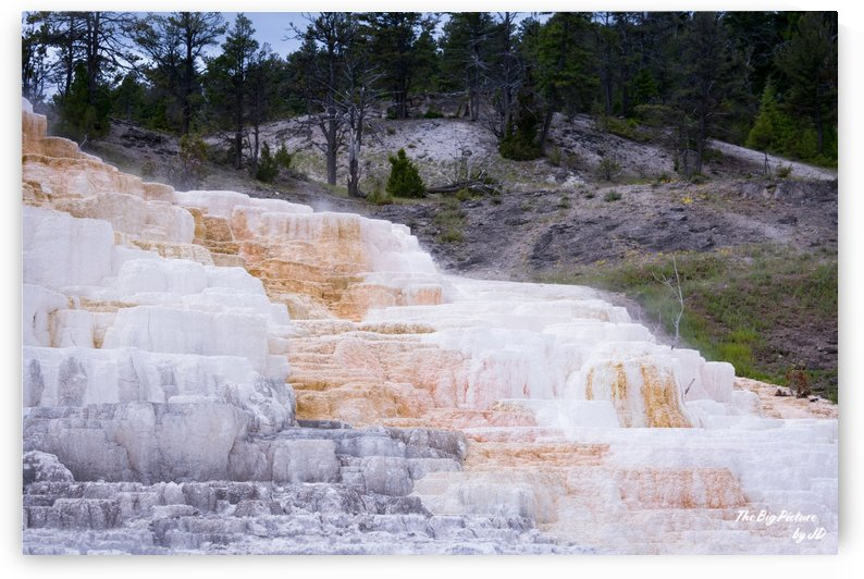 Yellowstone Lower Terrace by The Big Picture by JD