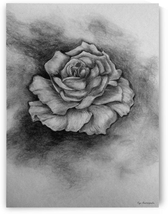 Single Rose by Faye Anastasopoulou