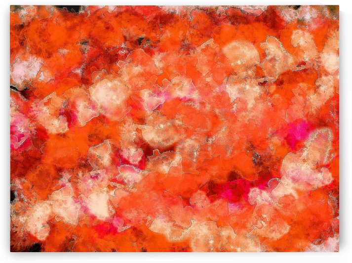 Orange Fluff  by Sherrie Larch