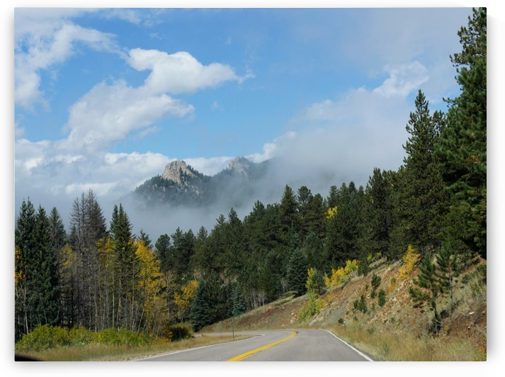 Colors of Fall at the Golden Gate Canyon State Parks Colorado  by Raksy