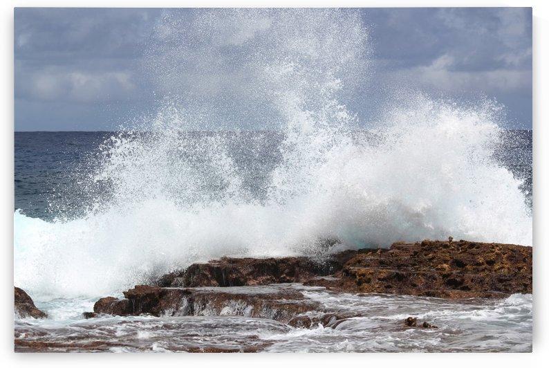Splash  by On da Raks