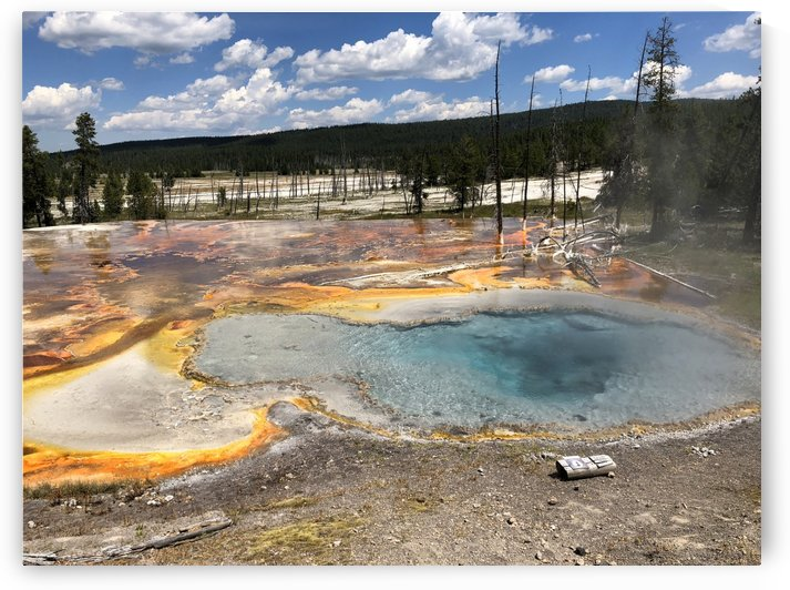 Celestine Pool Yellowstone National Park by On da Raks