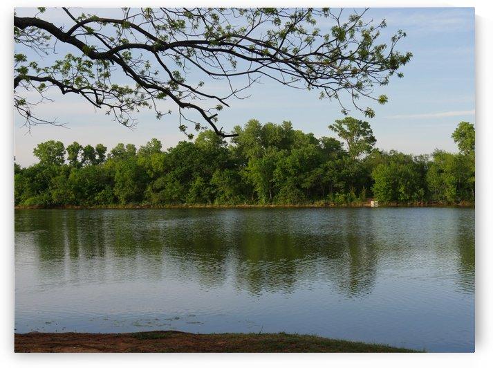 Lush Lakeside by On da Raks