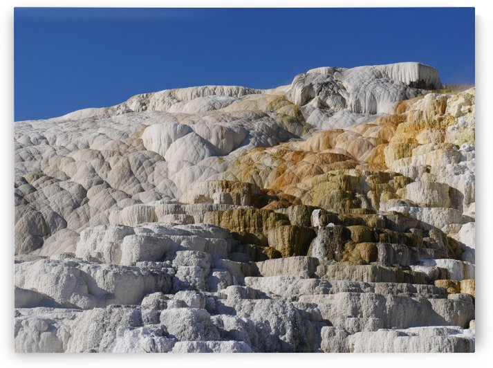 Mammoth Hot Springs Yellowstone National Park by On da Raks