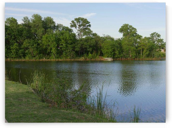 Lakeside View in early spring by Raksy