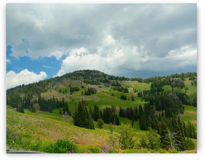 Lamar Valley Yellowstone National Park by Raksy