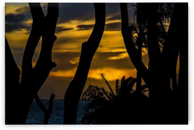 Silhouette Sunset Landscape Scene, Montevideo   Uruguay by Daniel Ferreia Leites Ciccarino
