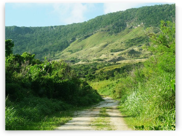 Mt Savanah Road Rota CNMI by Raksy