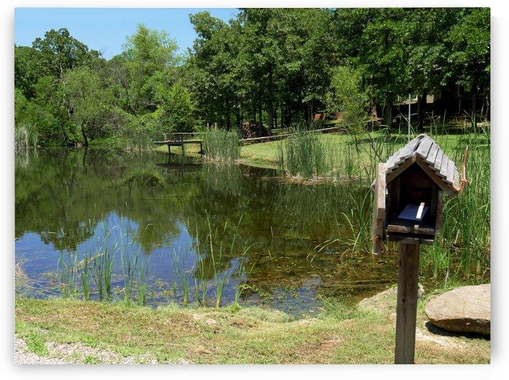 Mailbox by a Pond by Raksy