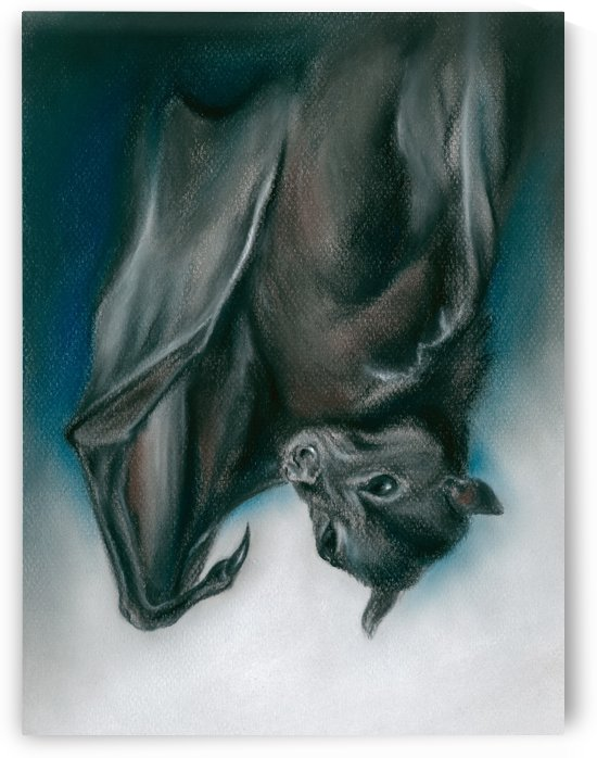 Bat Just Hanging Around by MM Anderson