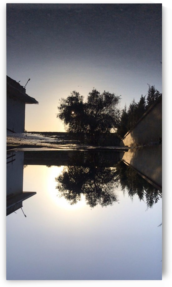 Mirror on a Lecce pond by Locspics