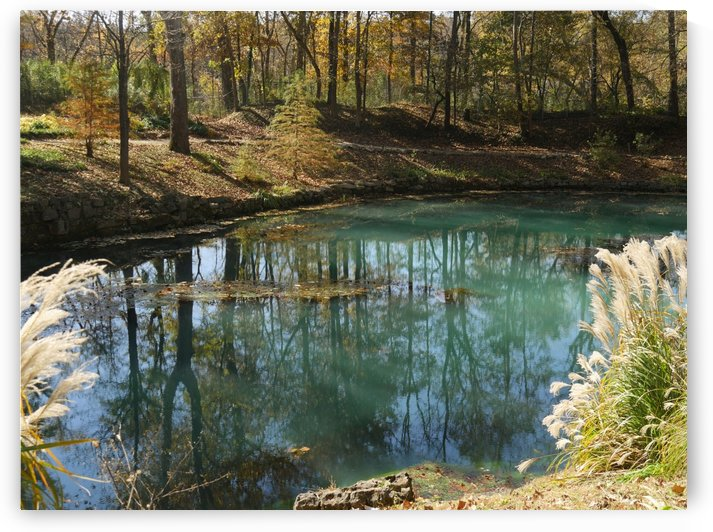 Blue Spring Arkansas by Raksy