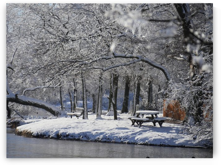 Frozen by Raksy