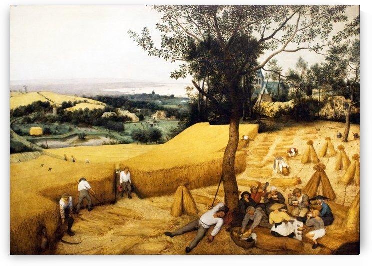The corn harvesters in August by Pieter Brueghel the Elder