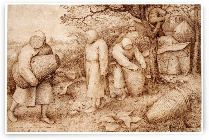 The Bee-Keepers by Pieter Brueghel the Elder