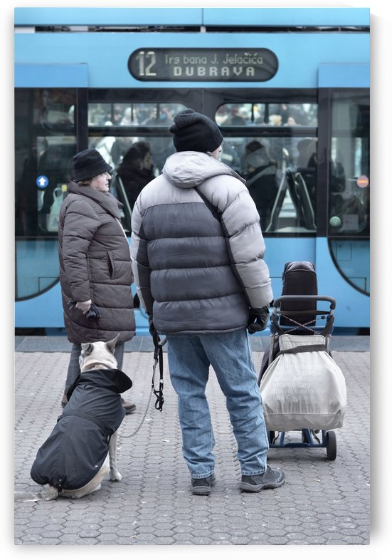 Tram 12 to Dubrava by Alen Gurovic