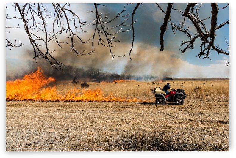 Trail Blazing A Controlled Burn by Garald Horst