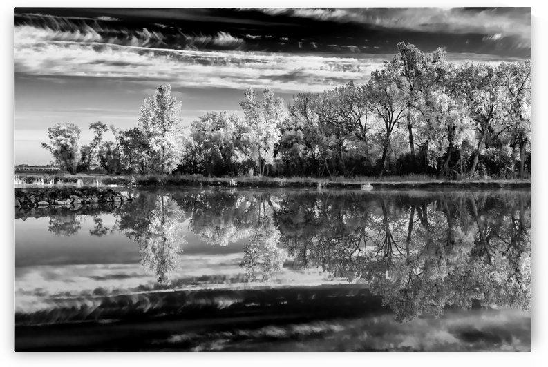 Calm Water Tones.BW by Garald Horst