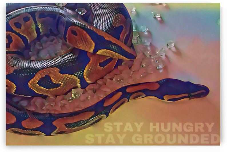 FearlessCollection_StayhungryStayGrounded36x24 by Christine.The.Artist