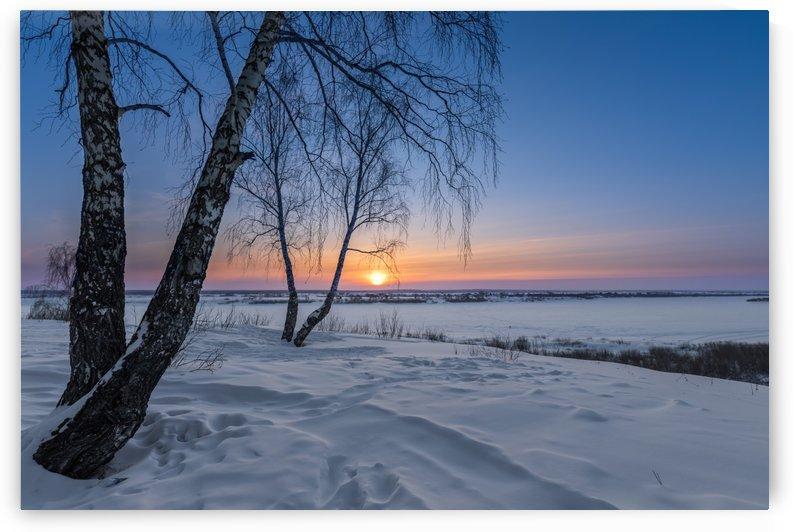 DSC_5962 1     1 by Dobrydnev