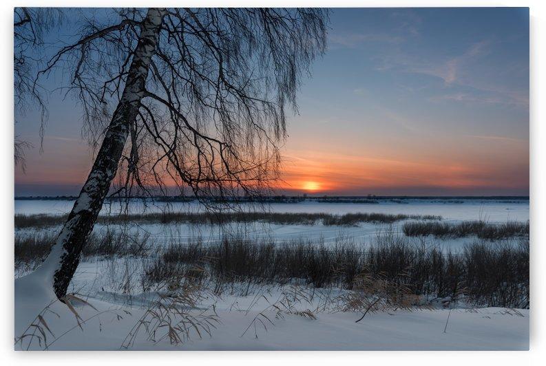 DSC_5970 1 by Dobrydnev