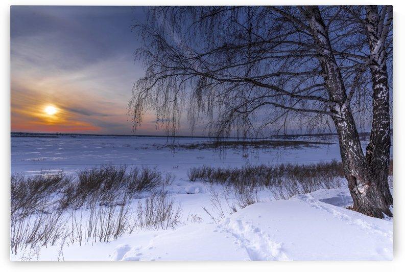 DSC_0280    1 by Dobrydnev