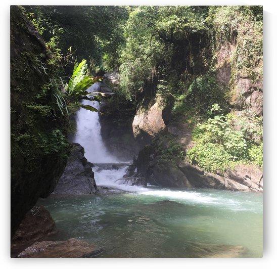 Mini waterfall  by  Jade Renteria