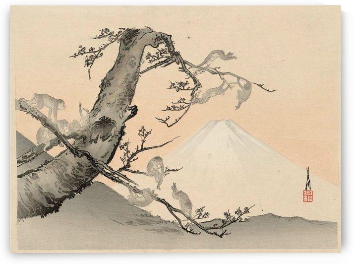 Monkeys and Mount Fuji Landscape by Ogata Gekko