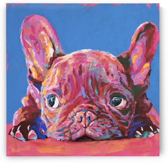 French Bulldog by Tadaomi Kawasaki