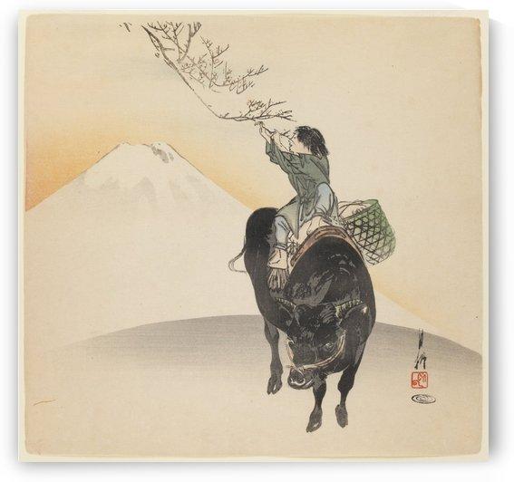 Kid riding bull by Ogata Gekko