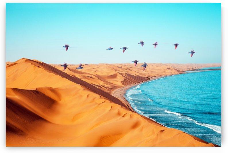 Desert Birds by 83 Oranges