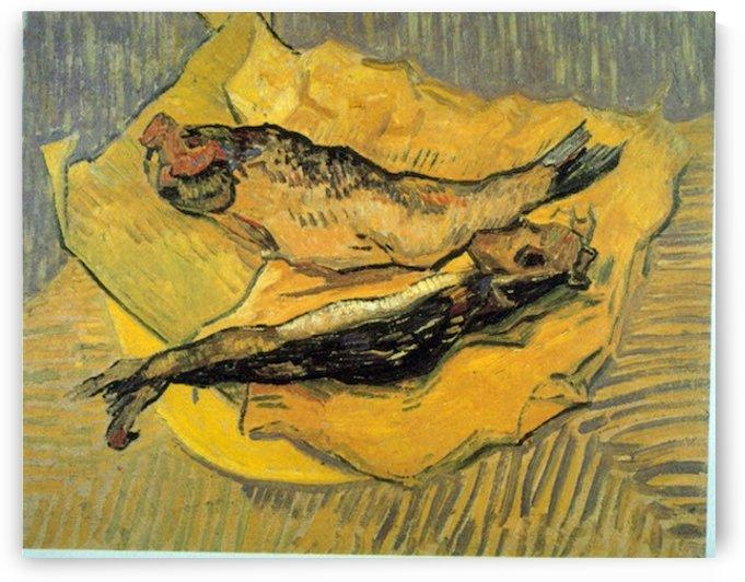 Bloaters by Van Gogh by Van Gogh