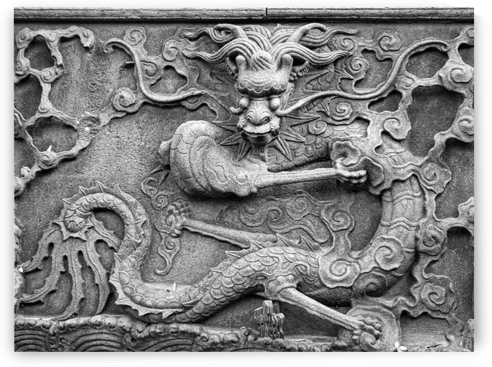 Chinese Dragon by Robert Knight