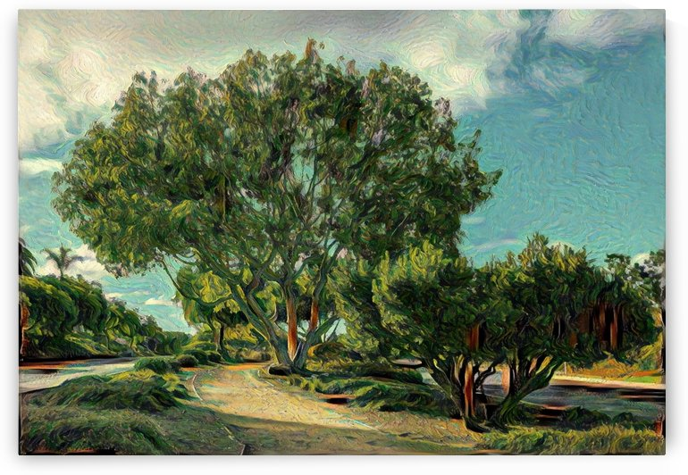 Malaga cove pepper tree by Dionyziuz