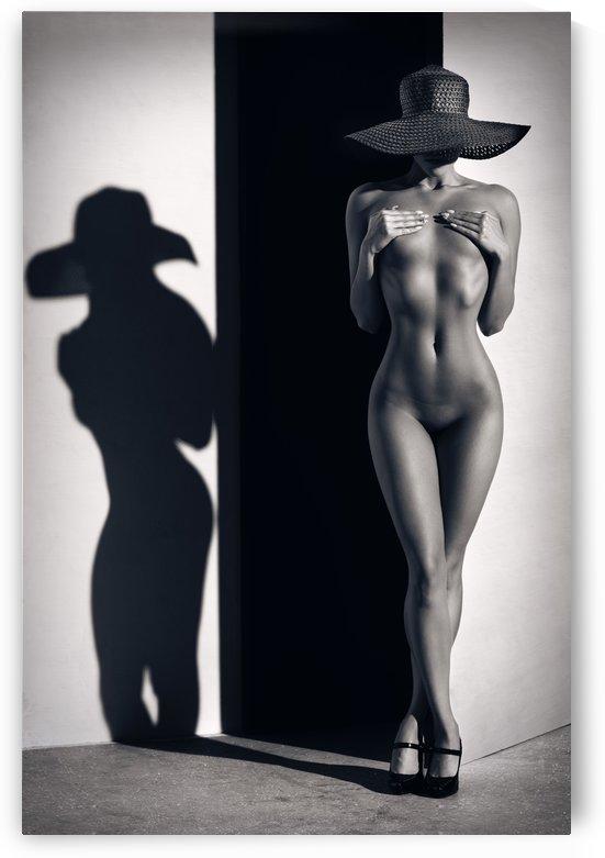 Sensual Nude Woman 1 by Johan Swanepoel