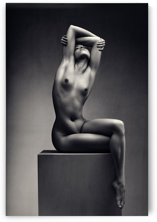 Nude woman fine art 7 by Johan Swanepoel