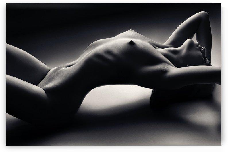 Sensual Nude Woman 2 by Johan Swanepoel