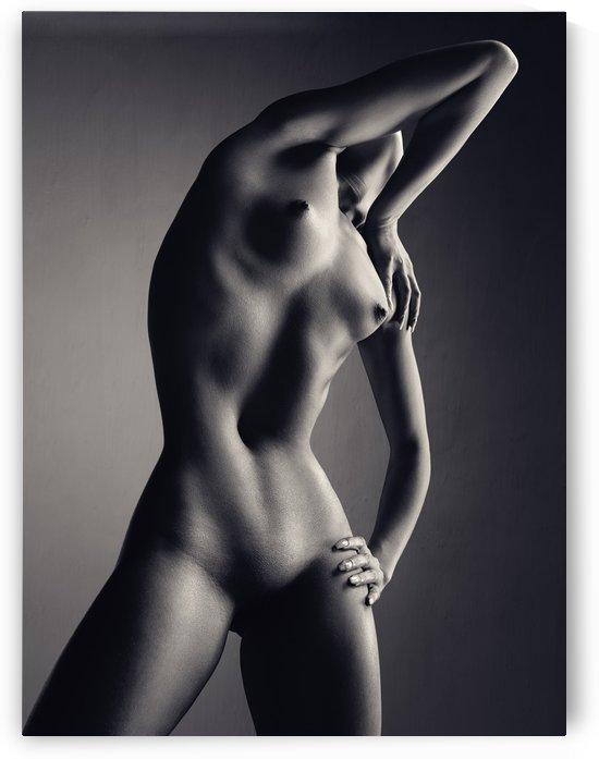 Nude woman fine art 9 by Johan Swanepoel