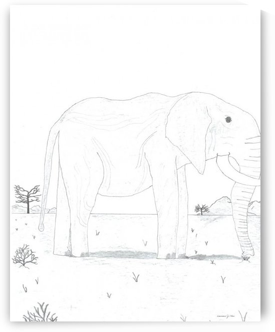 Mr. Elephant by Lawrence Olive