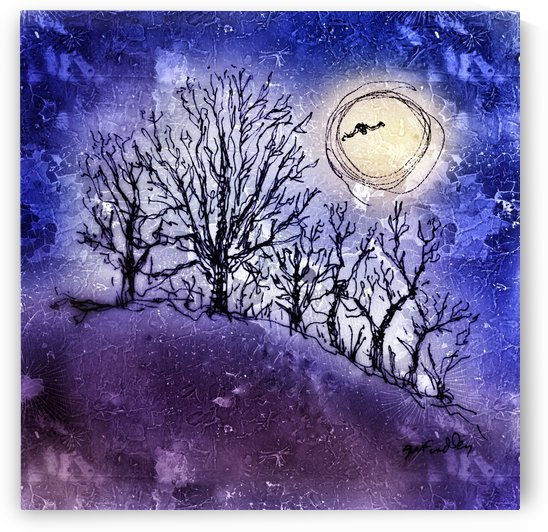Full Moon in Winter by Gerri Findley
