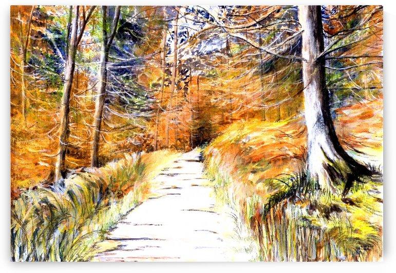 Autumn Forest by DHWebbArt
