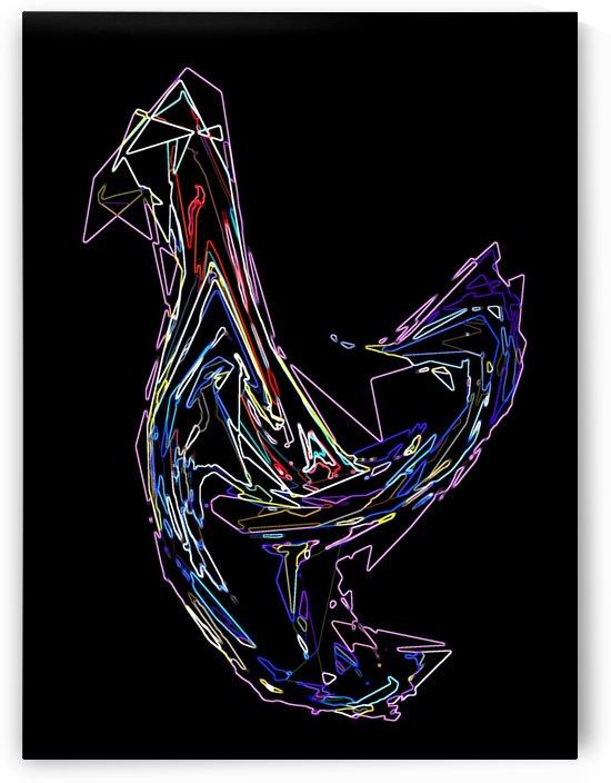 BIRD by Rizal Ghazali