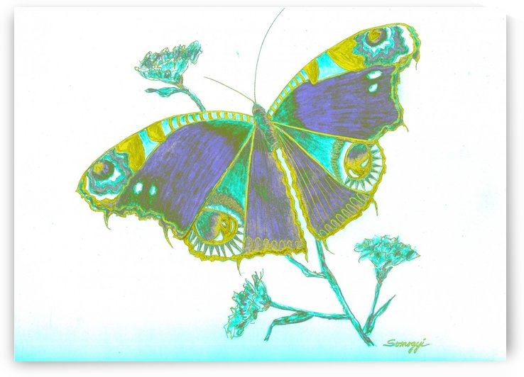 Butterfly Dressed for a Masquerade Ball III by Jayne Somogy