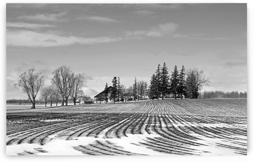 Winter Farm Black  And White by Deb Oppermann