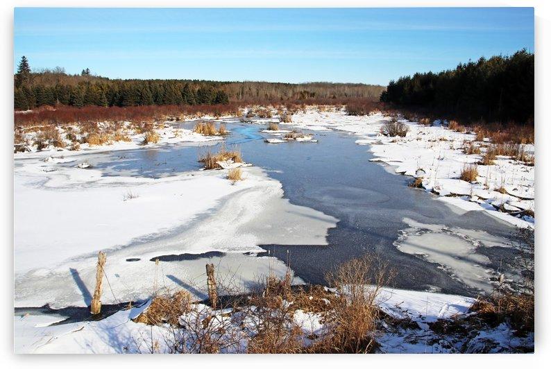 January Roadside Pond by Deb Oppermann