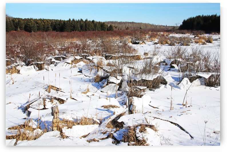 Ice Upheaval by Deb Oppermann