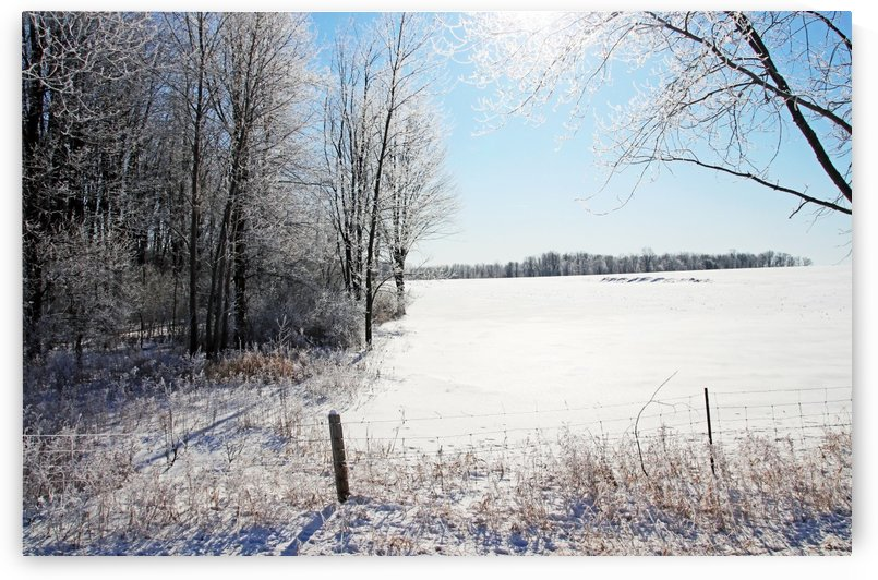 Frosty Winter Countryside I by Deb Oppermann