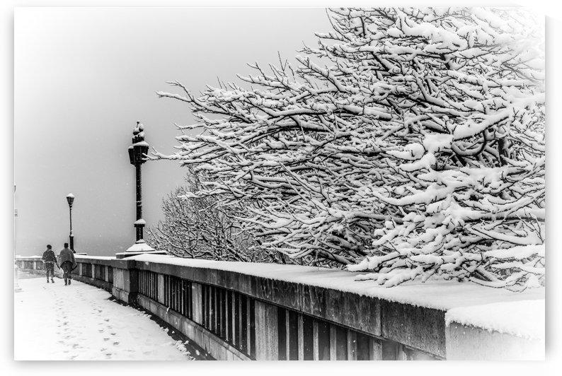 Snow Walk  by vincenzo