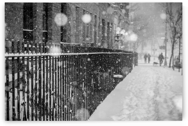 Its Snowing by vincenzo